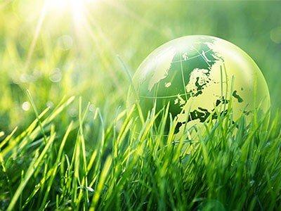 ecological-jetzt-gewinnen-40-000-euro-fuer-deine-gruene-zukunftsidee