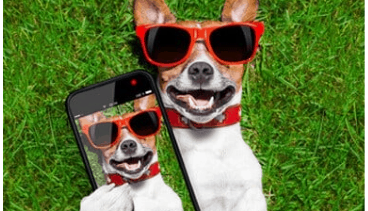 googeln-mit-smartphone-macht-dumm