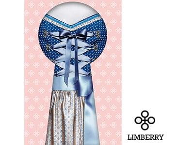 gruenderstory-limberry