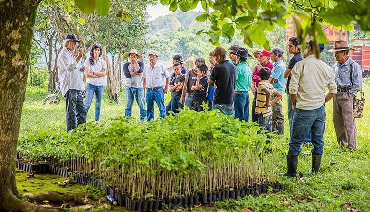 b-n-tree-gruenderstory-startup-team