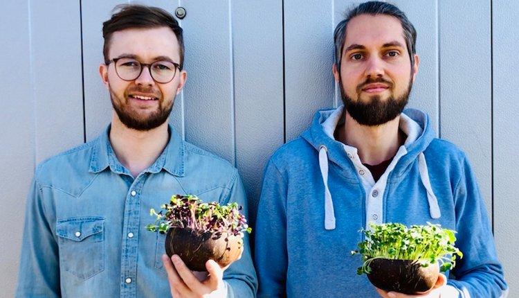 grow-grow-nut-startup-gruenderstory-gruender