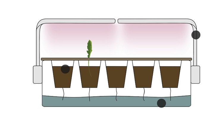urgrow-startup-gruenderstory-system