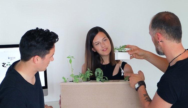 urgrow-startup-gruenderstory
