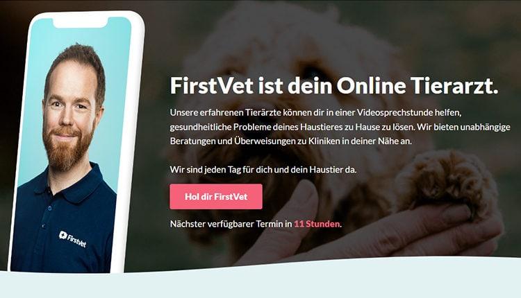 gruenderstory-firstvet-startup-story-online-tierarzt