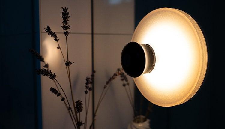 neozoon-startup-lampe-produkt1